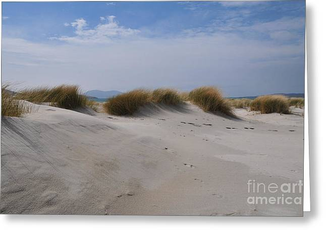 Luskentyre Sand Dunes Greeting Card by Nichola Denny