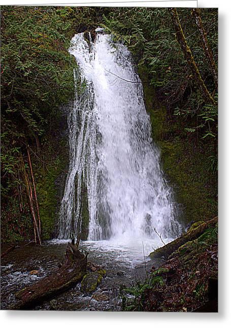 Madison Creek Falls Greeting Card by Lynn Bawden