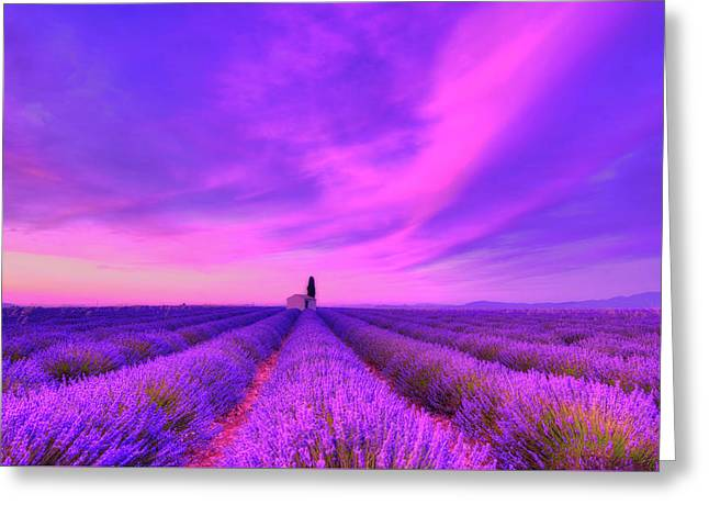 Magical Fields Greeting Card