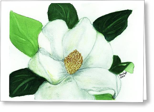 Magnolia II Greeting Card