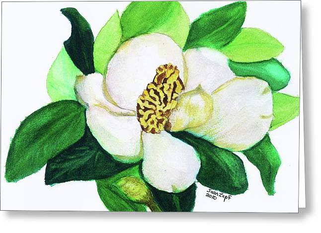 Magnolia Iv Greeting Card