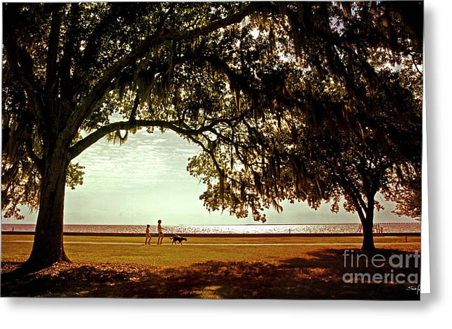 Dog Walking Greeting Cards - Mandeville Lakefront Greeting Card by Scott Pellegrin