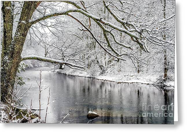 Greeting Card featuring the photograph March Snow Along Cranberry River by Thomas R Fletcher