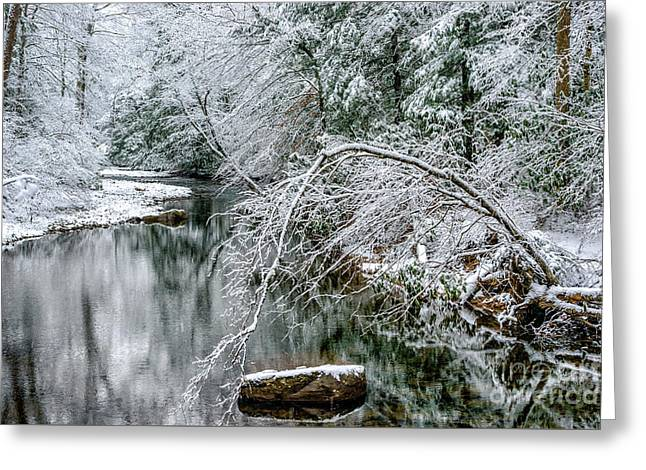 Greeting Card featuring the photograph March Snow Cranberry River by Thomas R Fletcher