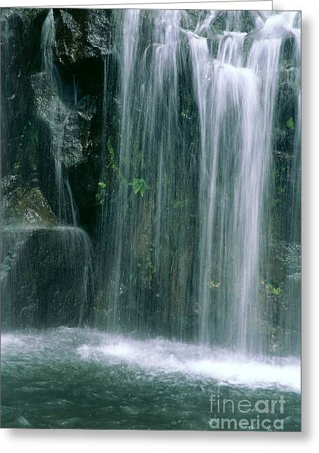 Maui Waterfall Greeting Card by Himani - Printscapes