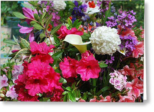 May Flowers Greeting Card by Linda Sramek