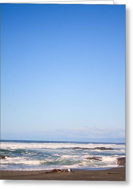 Mendocino California Coastline Greeting Card by Tammie Gilchrist