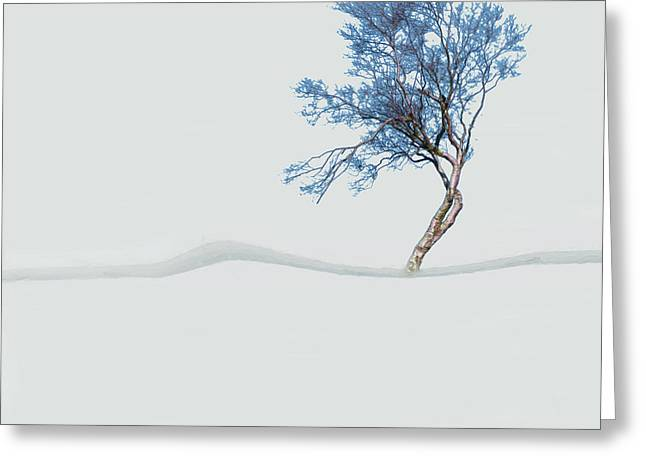 Mindfulness Tree Greeting Card