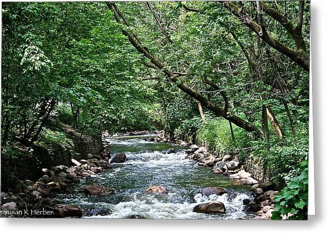 Minnehaha Creek Greeting Card