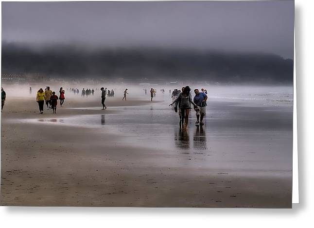 Misty Beach Greeting Card by David Patterson