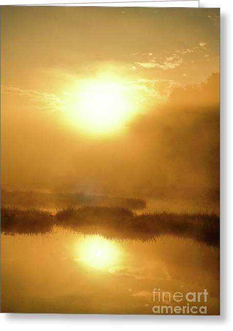 Misty Gold Greeting Card by Tatsuya Atarashi