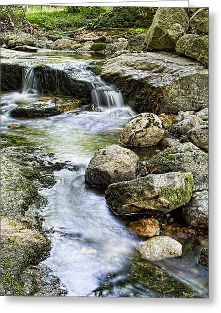 Stream Digital Greeting Cards - Mohonk Stream Greeting Card by Alexander Mendoza