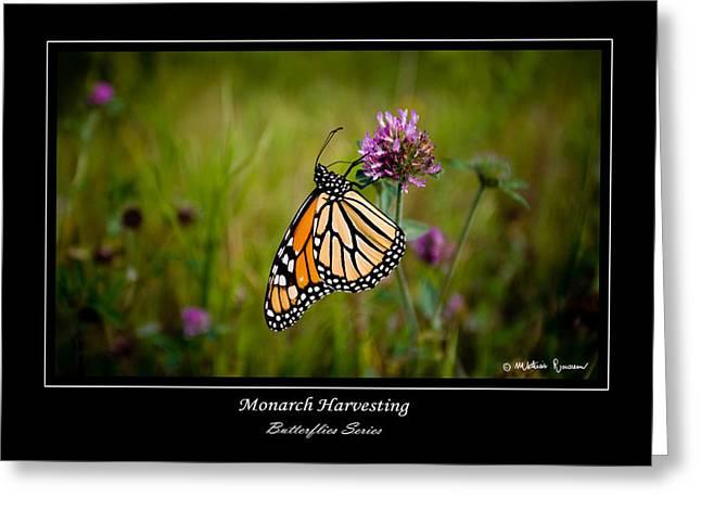 Monarch Harvesting Greeting Card by Mathias Rousseau