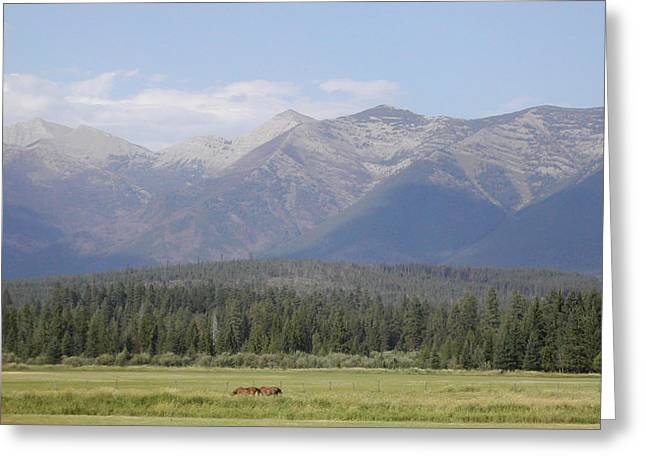 Montana Mountains Greeting Card by Lisa Patti Konkol