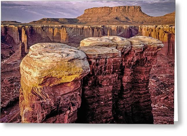 Monument Basin, Canyonlands Greeting Card