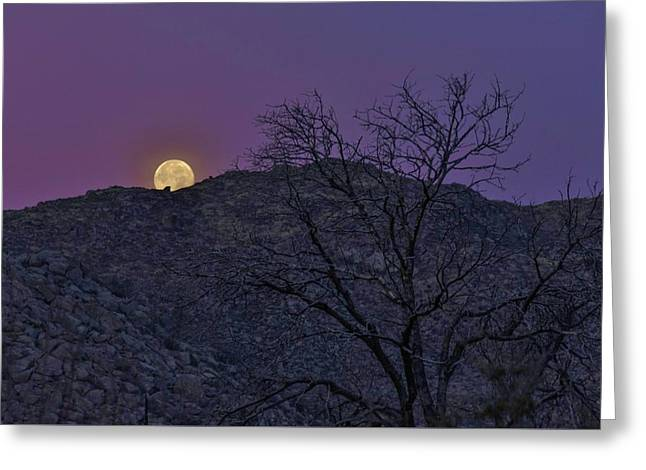 Moon Set At Sunrise Greeting Card