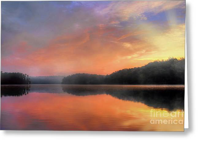 Greeting Card featuring the photograph Morning Solitude by Darren Fisher