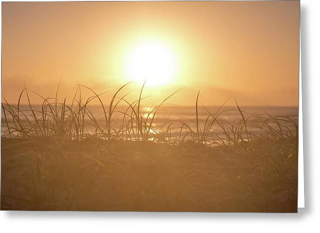 Greeting Card featuring the photograph Morning Sun by Az Jackson