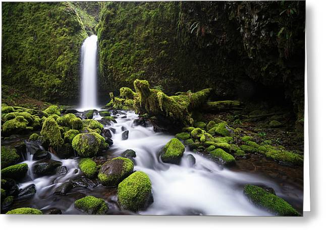 Mossy Grotto Greeting Card