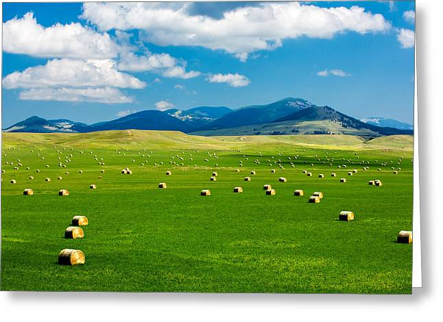 Mountain Fields Greeting Card by Todd Klassy