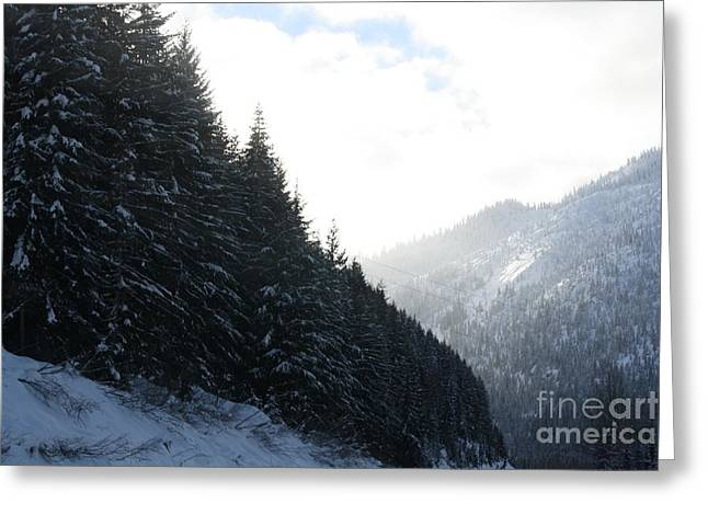 Mounts And Snow Greeting Card by Igor Baranov