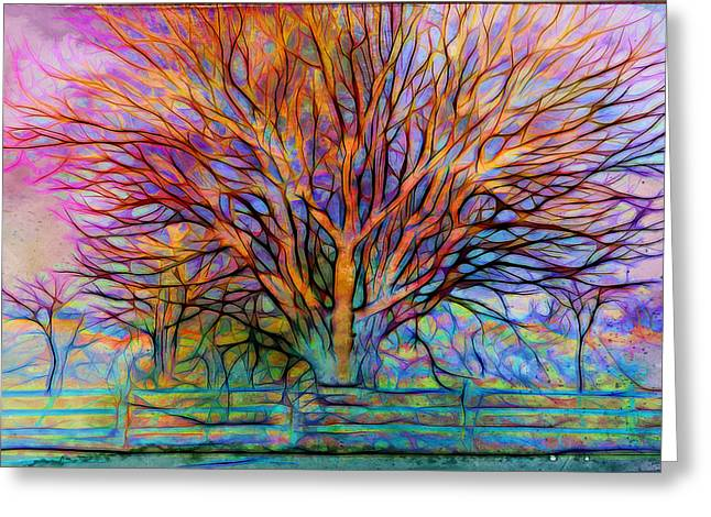 Naked Tree Greeting Card by Lilia D