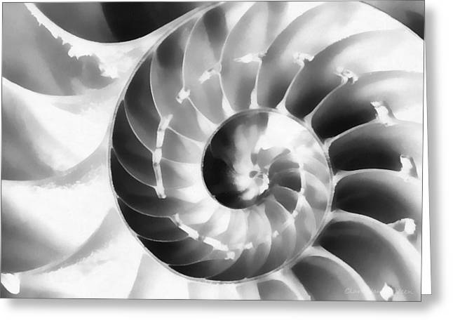 Nautilus Greeting Card