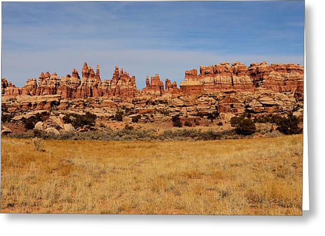 Needles At Canyonlands Greeting Card