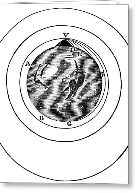 Newtons Projectile, Principia, 1687 Greeting Card