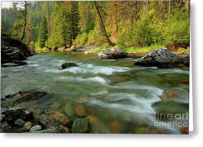 North Fork Of The St. Joe Greeting Card by Idaho Scenic Images Linda Lantzy