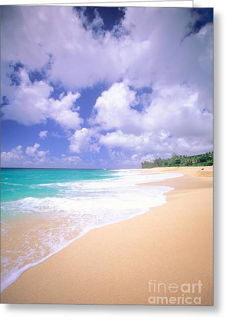 North Shore Greeting Card by Vince Cavataio - Printscapes