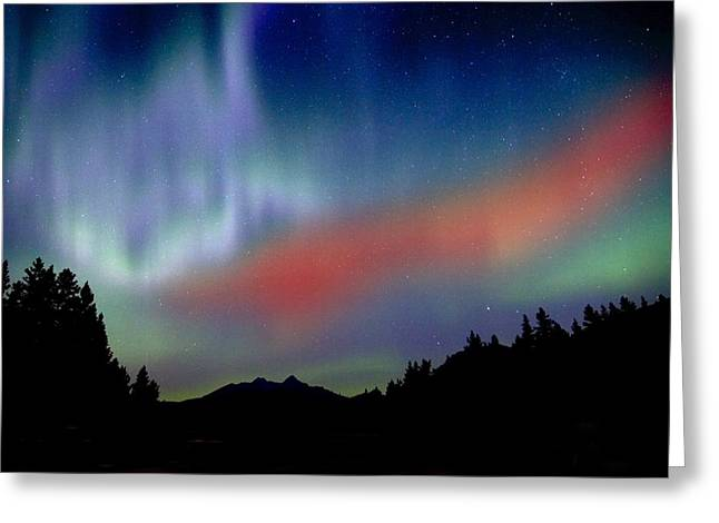 Awe Inspiring Greeting Cards - Northern Lights Greeting Card by Richard Wear