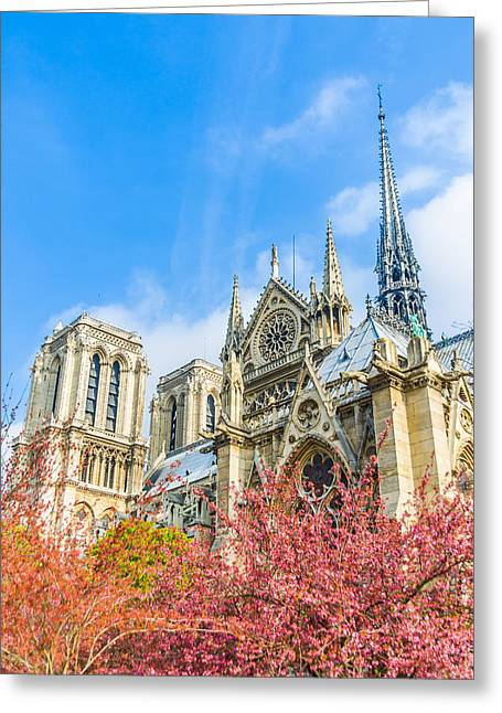 Notre Dame Cathedral In Springtime Greeting Card by Nila Newsom