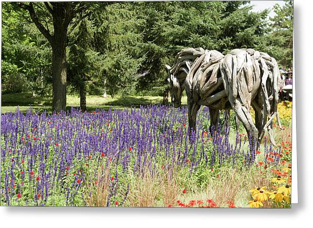 Odyssey The Horse Sculpture Made Of Driftwood By Heather Jansch 2 Greeting Card