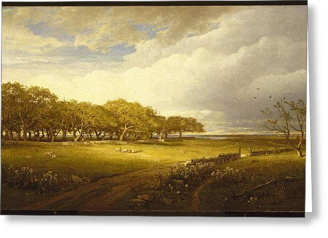 Old Orchard At Newport Greeting Card by William Trost Richards