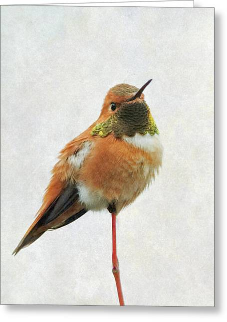 Greeting Card featuring the photograph On Guard by Angie Vogel