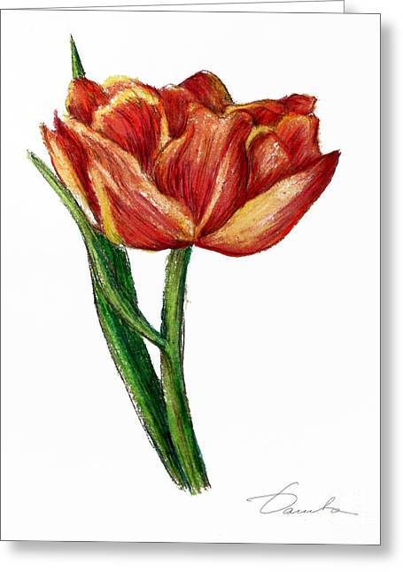 Orange Tulip Greeting Card by Danuta Bennett