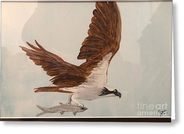 Greeting Card featuring the painting Osprey by Donald Paczynski