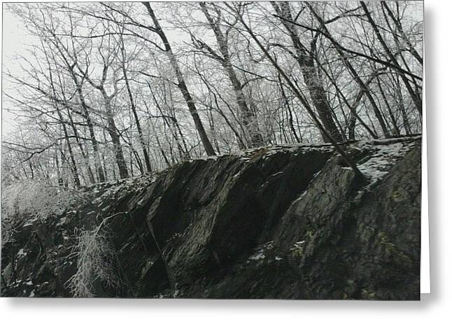 Greeting Card featuring the photograph Out Of The Rocks by Ellen Levinson