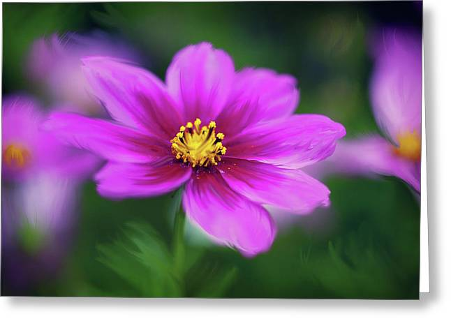 Painted Daisy Greeting Card by June Marie Sobrito