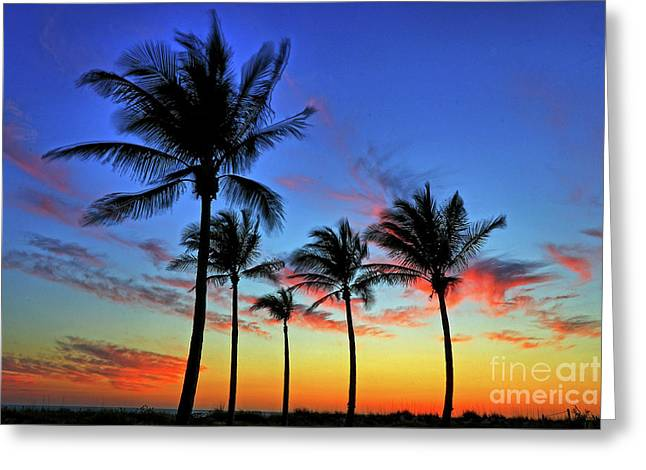 Greeting Card featuring the photograph Palm Tree Skies by Scott Mahon