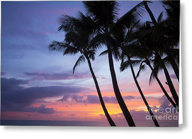 Palm Trees At Sunset, Keawekapu Beach Greeting Card