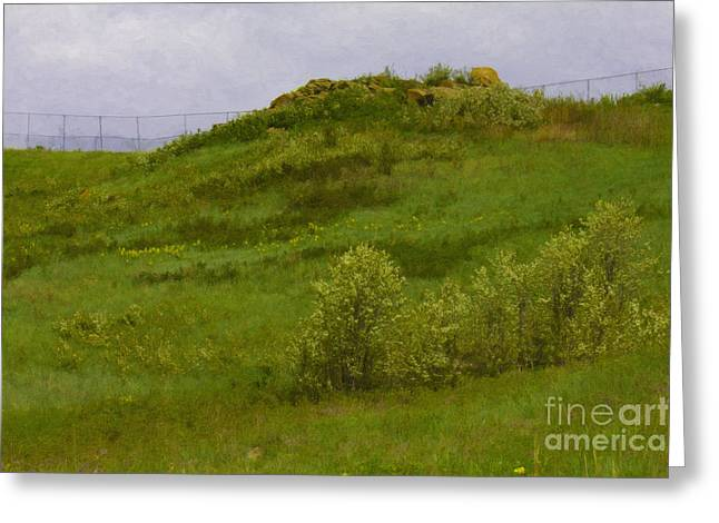 Panorama Hills Bluffs Greeting Card