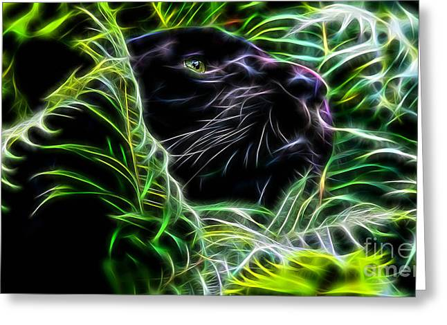 Panther Collection Greeting Card