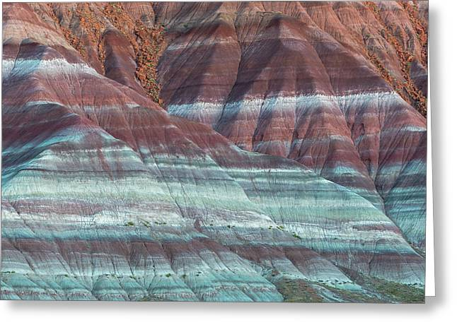 Paria Canyon Greeting Card