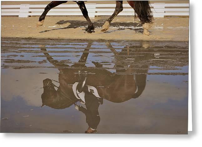 Pas De Deux Reflection Greeting Card by JAMART Photography