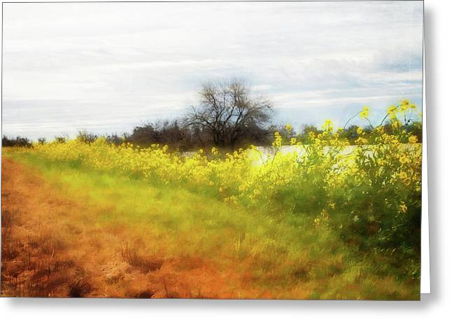Path Ahead Greeting Card by Terry Davis