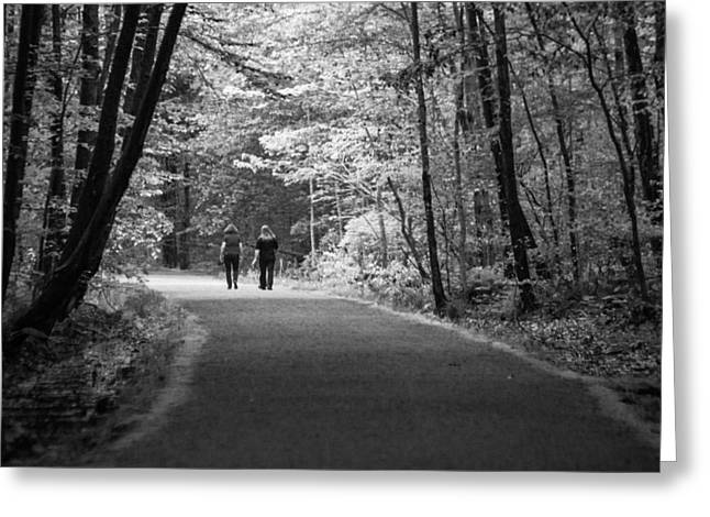 Path To Friendship Greeting Card by Karol Livote
