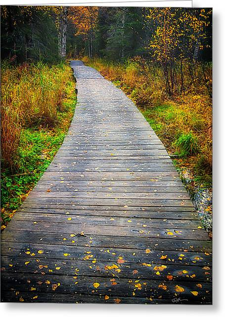 Pathway Home Greeting Card