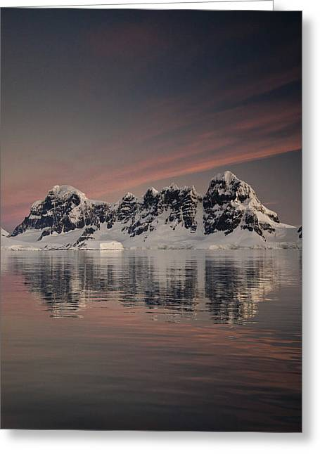 Snow Mountains Greeting Cards - Peaks At Sunset Wiencke Island Greeting Card by Colin Monteath